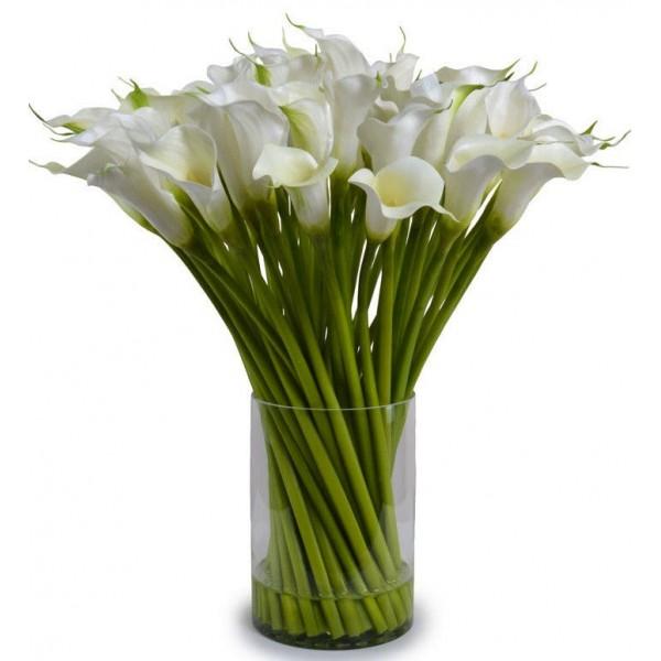 35 белых калл в вазе