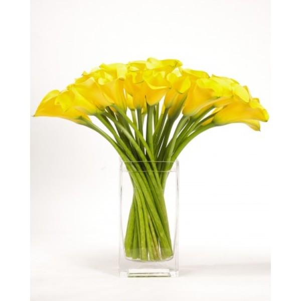 Купить цветы в мытищах с доставкой, ромашки купить украина