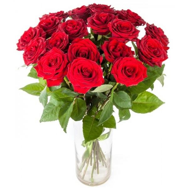 25 красных роз в вазе