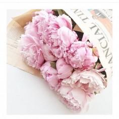 Розовые пионы поштучно