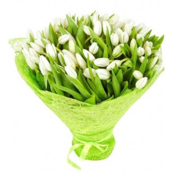Ох уж эти белые тюльпаны!
